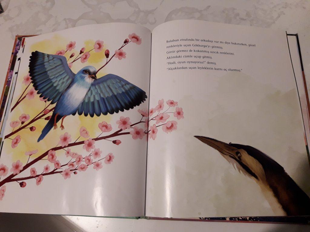 kulaktan kulaga filiz ozdem oiseau oiseaux enfants printemps documentaire livre jeunesse album nature